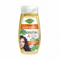 Bione BIO CANNABIS šampón proti lupinám 260 ml