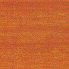 Oregonská pínia