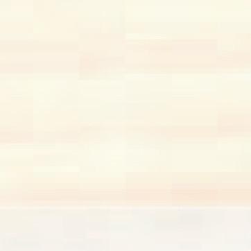 91 White